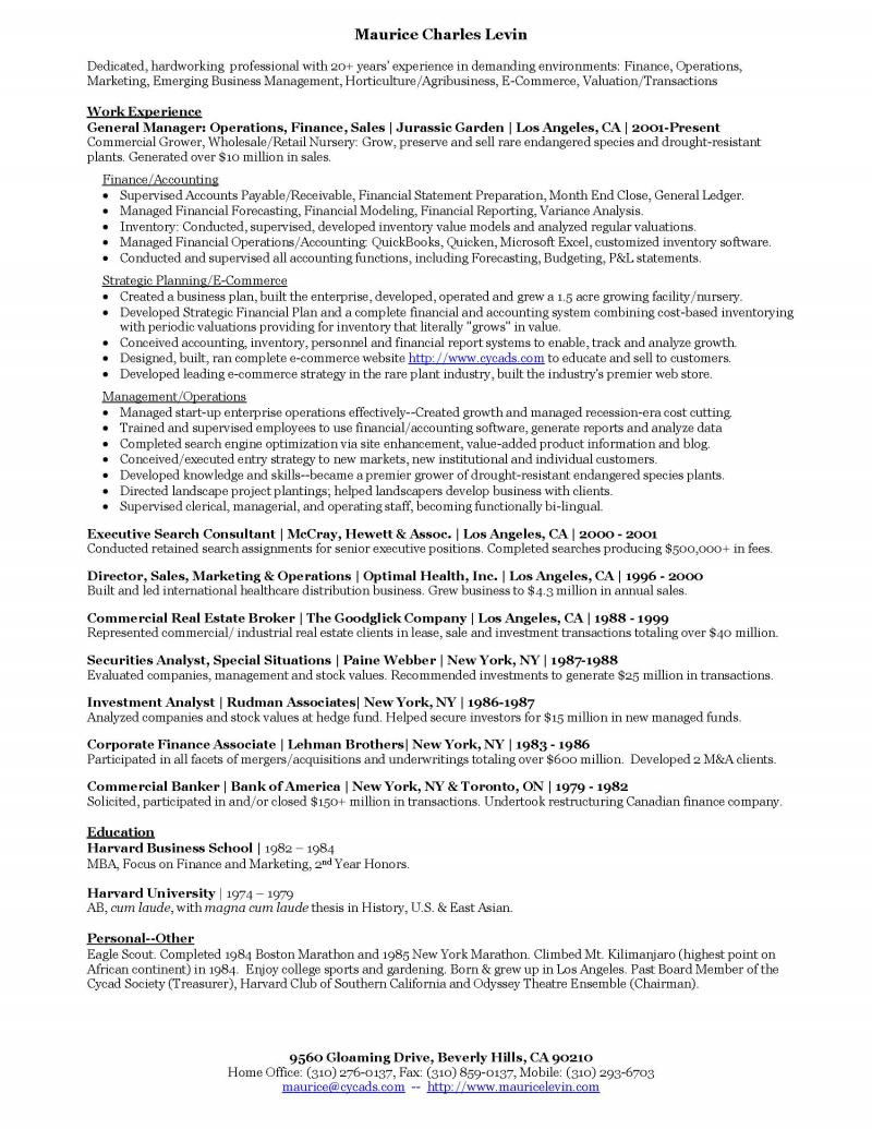 Maurice Levin Resume